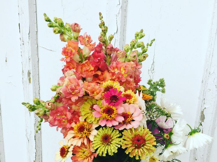 Tmx Img 8679 51 1048351 Madison, WI wedding florist