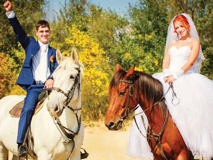 Tmx 1439048518947 5 Coaster Panel 4 Labeled Jamestown wedding favor
