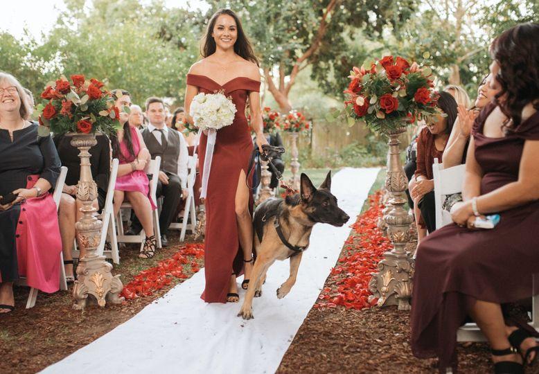 Bridesmaid with German Shepard