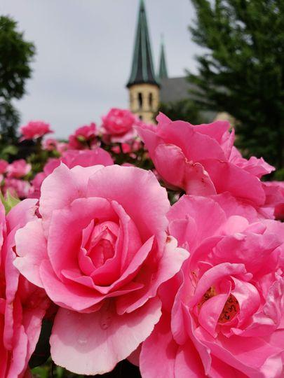 Flowers & Church Steeple