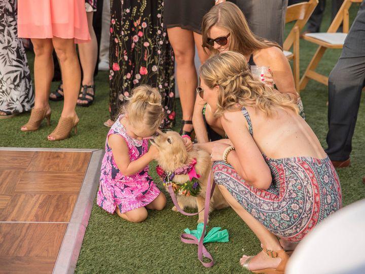 Tmx 1498082151355 Tampa Wedding Photographer 51 Valrico, FL wedding photography