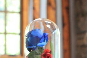 Enchanted Weddings NM