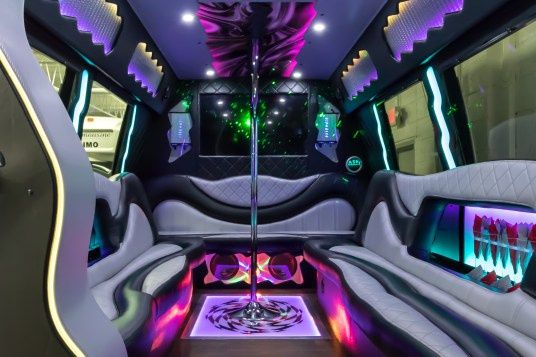 The disco bus
