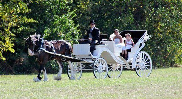 Horse & Buggy Entrance