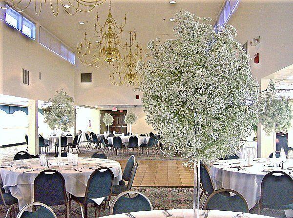 Tmx 1347480676743 Floralaccentsreceptionbabybreathroom North Tonawanda wedding florist
