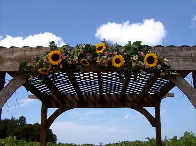 Tmx 1347481613245 Floralaccentsweddingceremonyjuly212012sunflowerarborcloseup North Tonawanda wedding florist