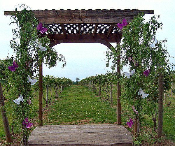 Tmx 1347481651935 Floralaccentsweddingceremonymay272012curlywillowbutterflystands North Tonawanda wedding florist