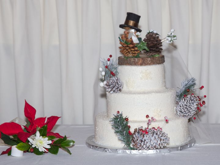 Tmx Mr Mrs Ortiz Reception 51 1977551 159499219825619 Spring Hill, FL wedding photography