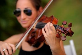 Virgin Islands Violin