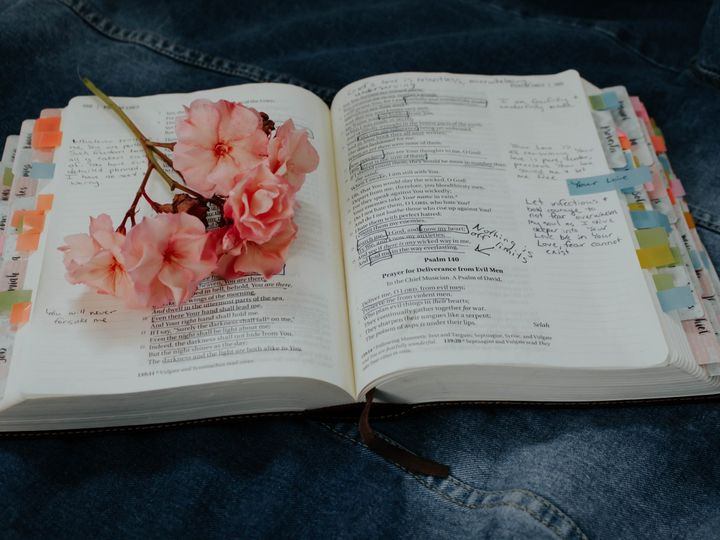 Tmx Bible Flowers 51 1969651 159200551269258 Apopka, FL wedding officiant