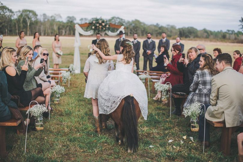Pets in your ceremony