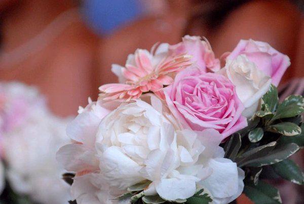 Tmx 1238452368390 1067 Wayne wedding florist