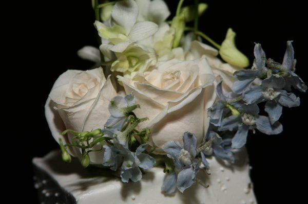 Tmx 1238514614156 IMG6722 Wayne wedding florist