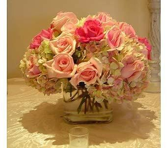 Tmx 1238515659609 HW02282831 Wayne wedding florist
