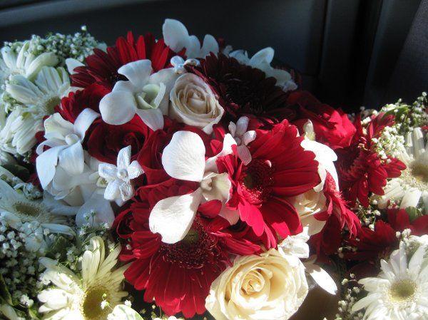 Tmx 1238515841890 IMG0584 Wayne wedding florist