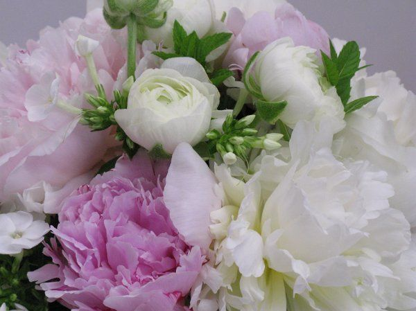 Bouquet of peonies, ranunculus, and phlox.