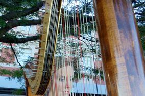 Harpist- Alison Renee