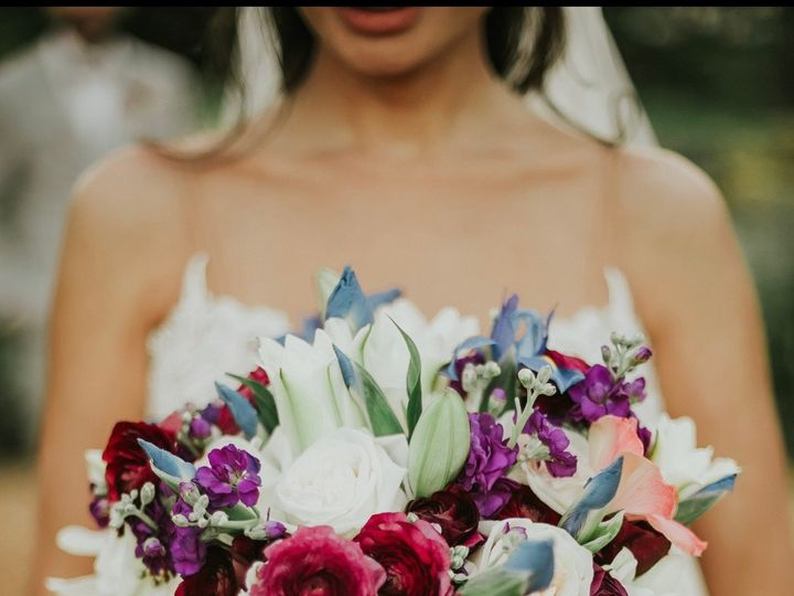 Tmx Img 0788 51 1899951 158870734178470 Hollywood, FL wedding planner