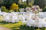 Wedding Getaway Paradise image