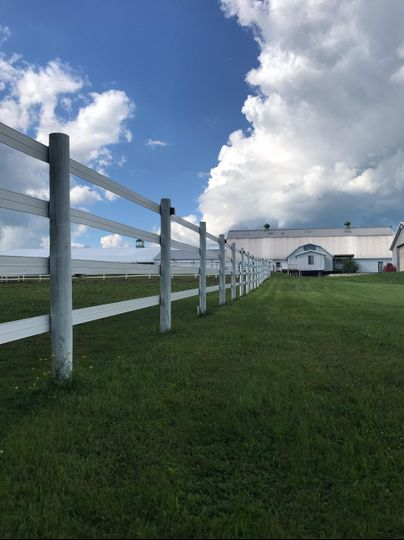 Pasture Backdrop