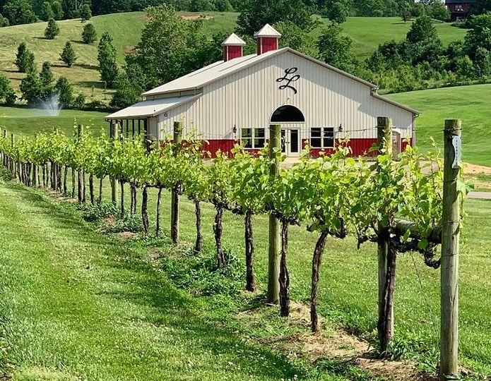 Vines and Pavillion