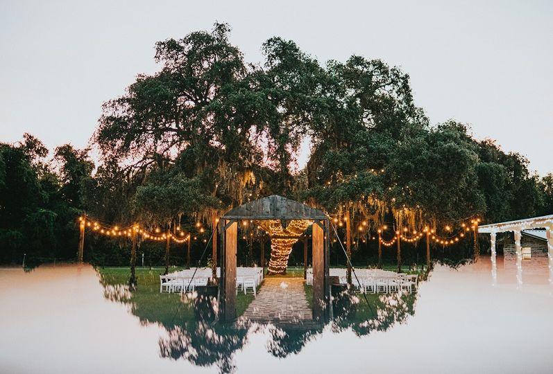 Gorgeous 120 year old oak