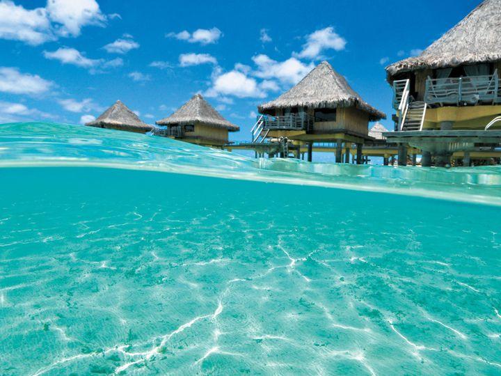 Tmx 1421720629887 Bora Bora Apex wedding travel