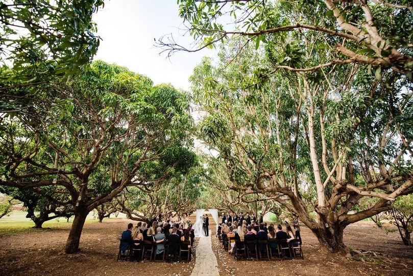 Mango Orchard Ceremony