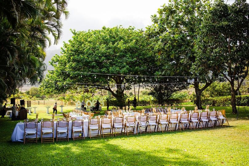 Orchard Lawn Reception
