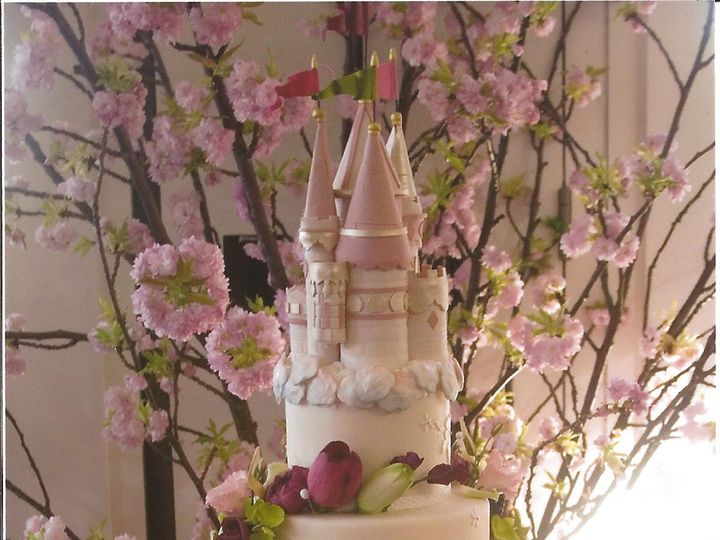 Tmx Princess Cake 51 42161 158679103712519 Millwood, NY wedding planner