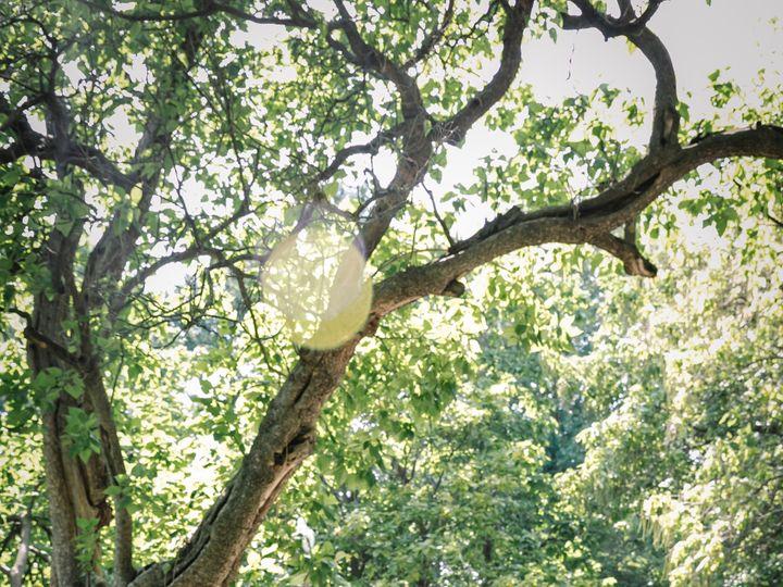 Tmx Curtin Wedding Portraits 71 51 965161 1570031167 Saint Louis wedding photography