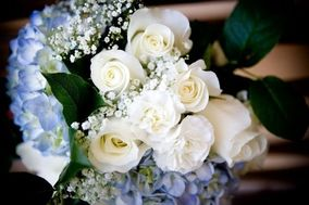 Blue Angel Parkway Florist