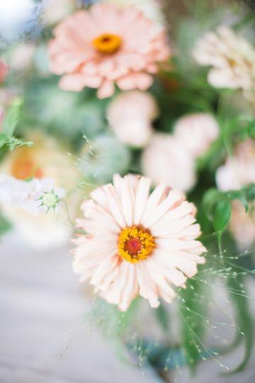 floressence flowers flowers brevard nc weddingwire. Black Bedroom Furniture Sets. Home Design Ideas