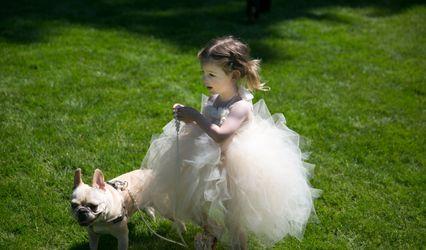 MUSE: Inspired Wedding & Event Design 1