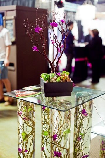 Designer, Erin McClellan Free standing glass table with curly willow, succulents and orchids....