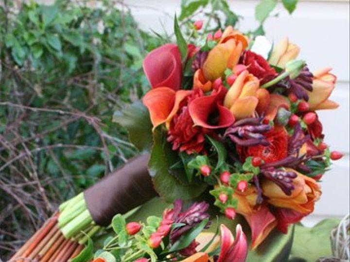 Tmx 1228780972065 IMG 4060 San Luis Obispo, California wedding florist