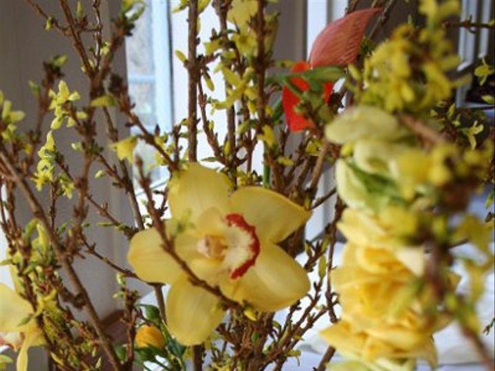 Tmx 1228781045753 IMG 4177 San Luis Obispo, California wedding florist