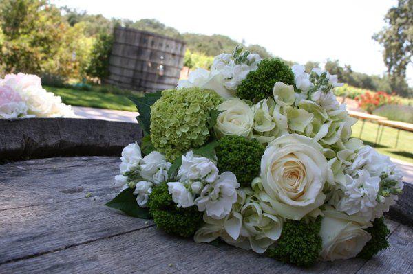 Tmx 1228781509378 IMG 5374 San Luis Obispo, California wedding florist