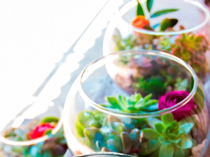 Tmx 1474948846772 Custom Terrariums Photo By Nicole Giger Photograph Bellingham, WA wedding florist