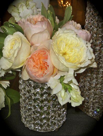 crystal english roses