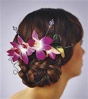 Tmx 1343306381280 ElegantOrchidHeadpiece76.99 Mansfield wedding florist