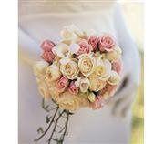 Tmx 1343306566983 LushandLovelyRosesNosegay100 Mansfield wedding florist