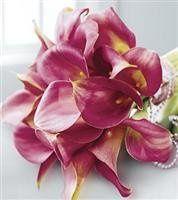 Tmx 1343306587793 MatrimonyBouquet244.99 Mansfield wedding florist