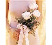 Tmx 1343306781186 SimplePinkRosestocarry25.00 Mansfield wedding florist