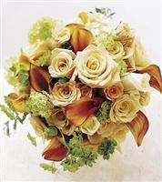 Tmx 1343306820739 Tohaveandtoholdbouquet293.99 Mansfield wedding florist