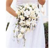 Tmx 1343306903301 Whitecascadebridalbouquet245.00 Mansfield wedding florist