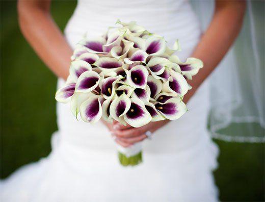 Tmx 1343307782533 Picassolilybouquet Mansfield wedding florist