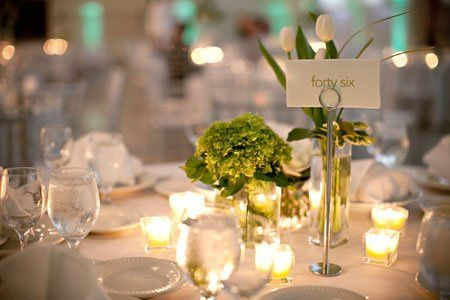 Elegant collection of mini green hydrangea and white tulips.