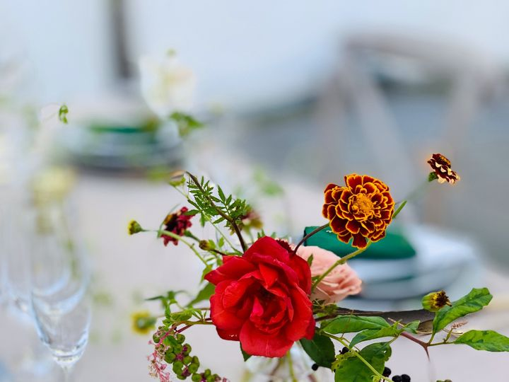 Tmx Img 0344 51 701661 157935776212451 Beacon wedding florist