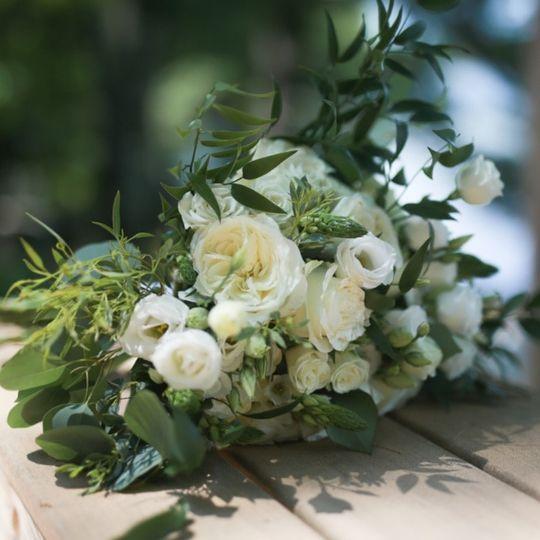 Alabaster Garden Rose's!